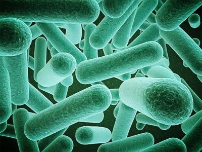 Характеристики биофильтра для септика и ЛОС