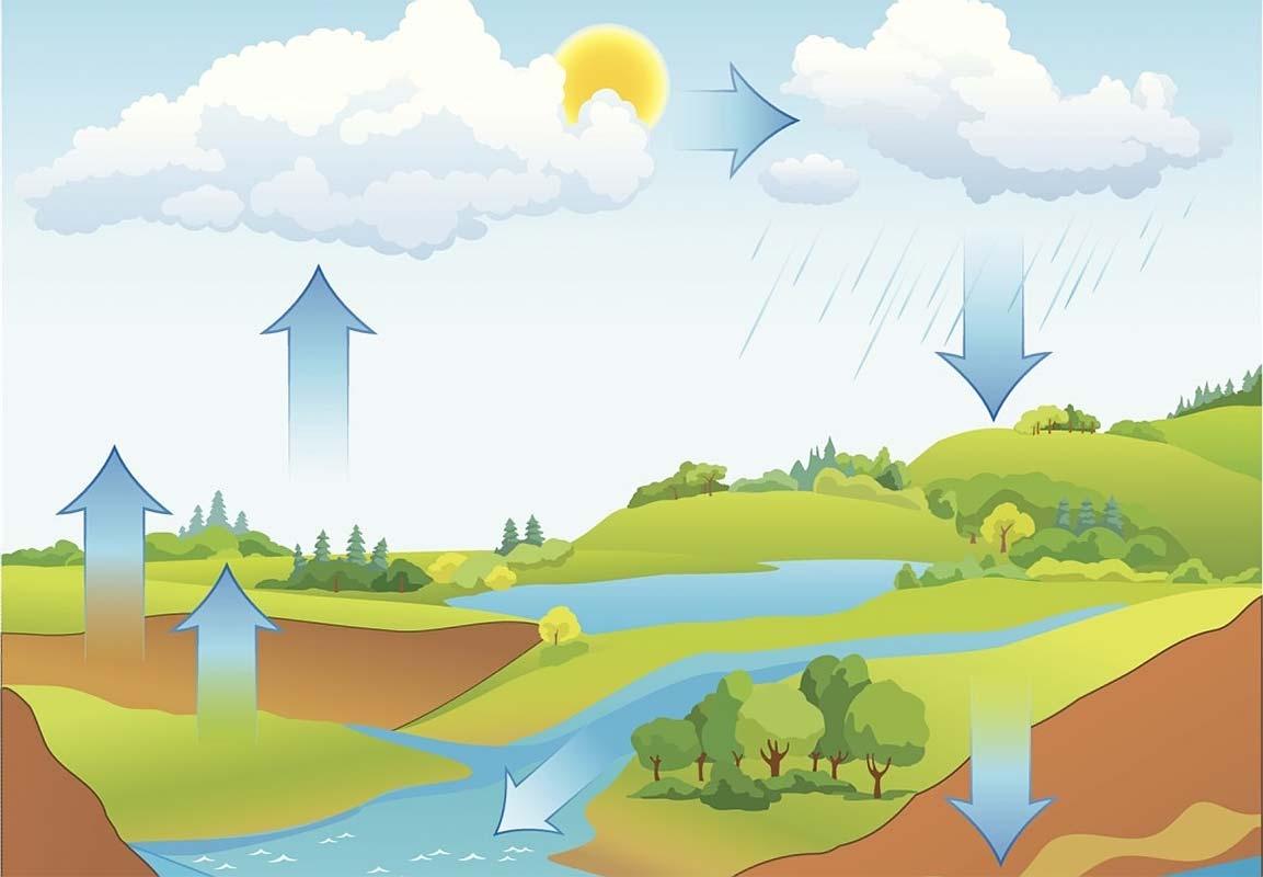 Уровень грунтовых вод, круговорот воды